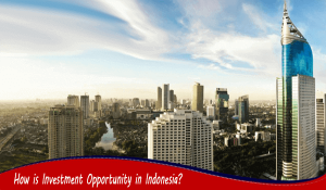 How is Investment Opportunity in Indonesia