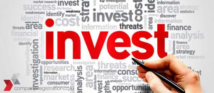 Definition of Investment in the Investment Law