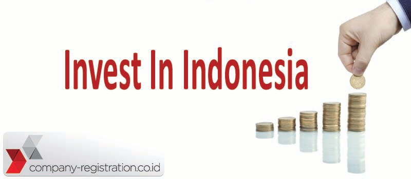 Percentage of Investment in Indonesia for Business Development