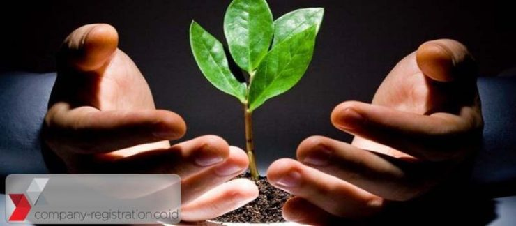 Types, Purposes, Benefits, and Procedure to Invest in Indonesia